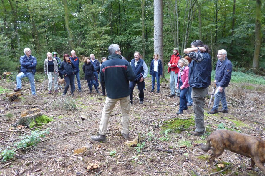 Lenneper Waldspaziergang 2019